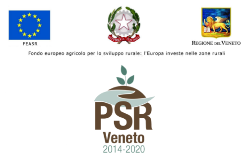 Banner web PSR beneficiari